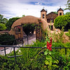 Hollyhocks at Chimayo II