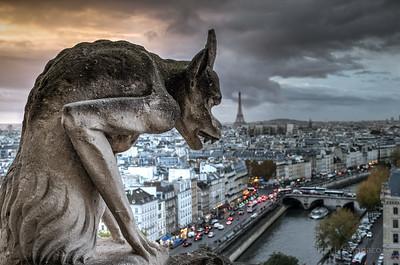 Notre Dame Gargoyle [Looking North-East]