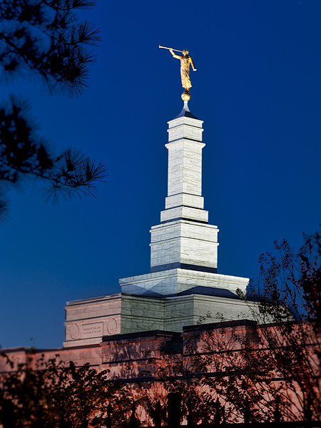 Raleigh North Carolina Temple, The Church of Jesus Christ of Latter Day Saints