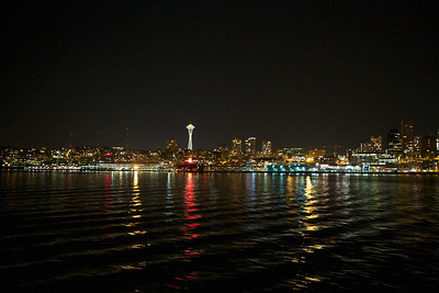 The needle at night