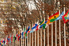Flags of the Nations at the UN complex, Manhattan, New York