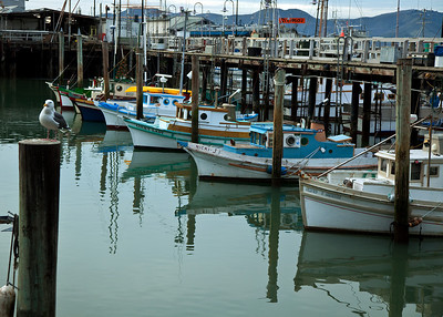 Boats docked near Fisherman's Wharf - San Francisco