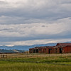Buffalo ranch in Hartsel, Colorado