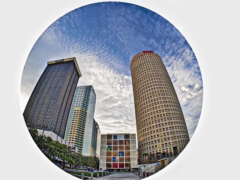 Tampa's Kiley Garden Fisheye Shot