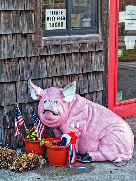 Smokin' D's BBQ Mascot