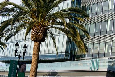 1114_d800_Kukui_Santana_Row_San_Jose_Business_Portrait_Photography