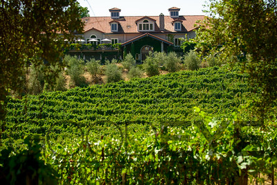 0363_d800b_Byington_Winery_Los_Gatos_Commercial_Photography