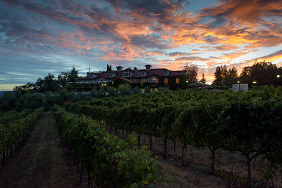 0285_d810a_Byington_Winery_Los_Gatos_Commercial_Photography