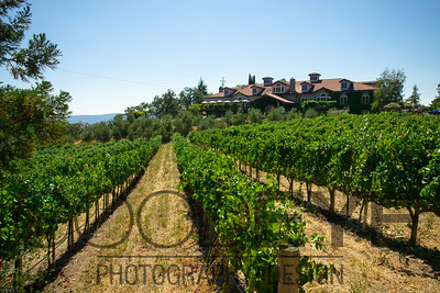 1471_d800a_Byington_Winery_Los_Gatos_Commercial_Photography