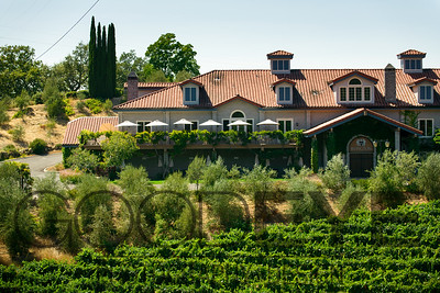 0360_d800b_Byington_Winery_Los_Gatos_Commercial_Photography