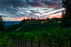 1301_d800b_Byington_Winery_Los_Gatos_Commercial_Photography