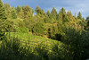 0166_d810a_Byington_Winery_Los_Gatos_Commercial_Photography