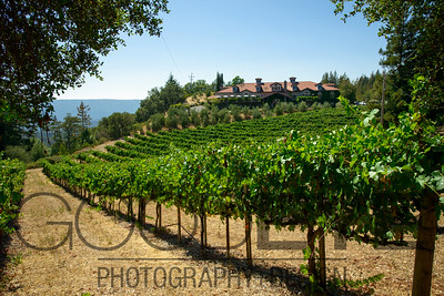 1468_d800a_Byington_Winery_Los_Gatos_Commercial_Photography