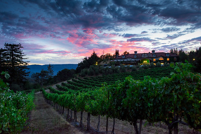 0305_d810a_Byington_Winery_Los_Gatos_Commercial_Photography