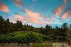 0276_d810a_Byington_Winery_Los_Gatos_Commercial_Photography
