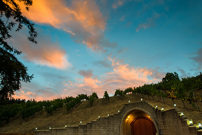 0270_d810a_Byington_Winery_Los_Gatos_Commercial_Photography