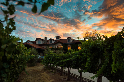 0280_d810a_Byington_Winery_Los_Gatos_Commercial_Photography