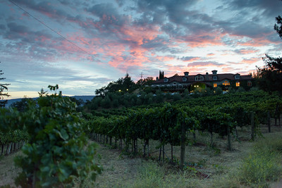0298_d810a_Byington_Winery_Los_Gatos_Commercial_Photography