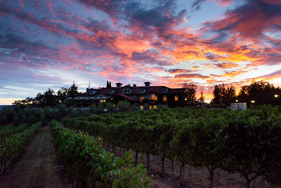 0288_d810a_Byington_Winery_Los_Gatos_Commercial_Photography