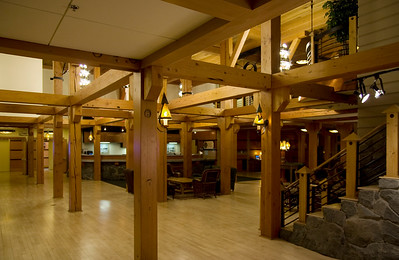 Lobby: forest of timber framing