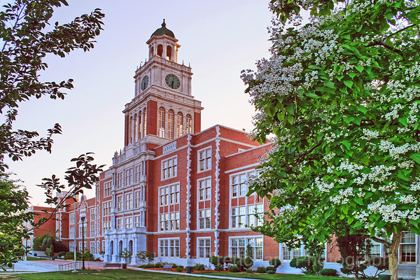 East High School with Catalpa Tree Springtime