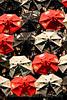 Tokyo Joe's Umbrellas