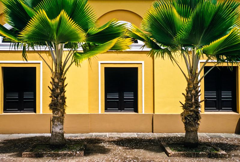 Palm Trees and Windows, El Arsenal de la Puntilla Capilla, Old San Juan, Puerto Rico