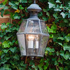 Carriage Lamp on Ivy Covered Wall, Alexandria, Virginia