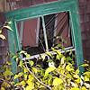 Green window in storm-destroyed house in Kentucky