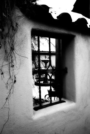 Winter Still Life #1a - Santa Fe, New Mexico, USA