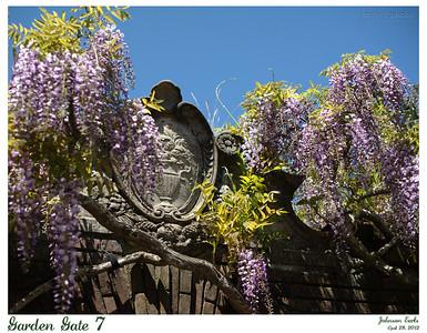 Garden Gate 7  Filoli, 28 April 2012