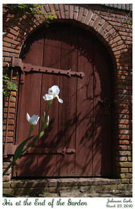 """One solitary iris is blooming next to the walkway in front of this door. The title refers to a sign next to the door reading """"Garden Closed Beyond This Point"""".  Filoli, 23 March 2010"""