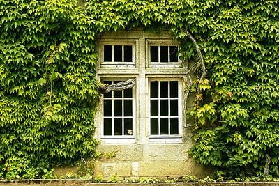 Window outside Paris, France.