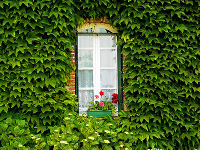 Window in Germany.