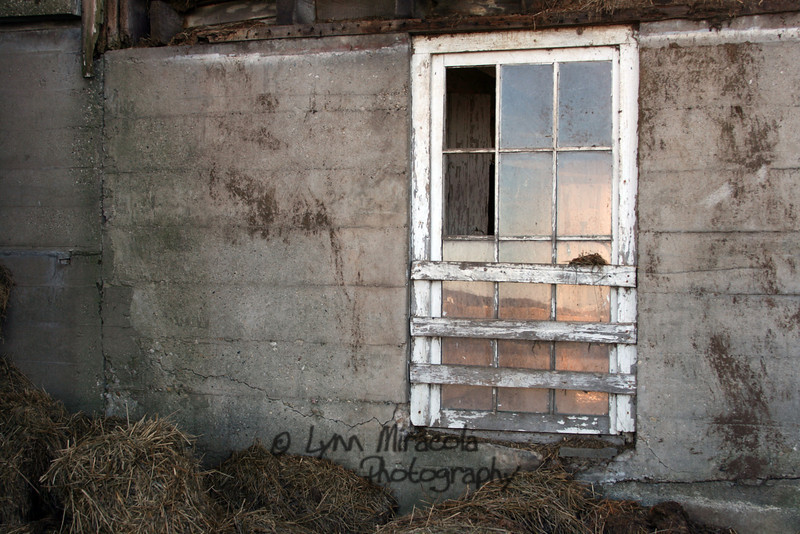 Old Barn Window 1/8/12