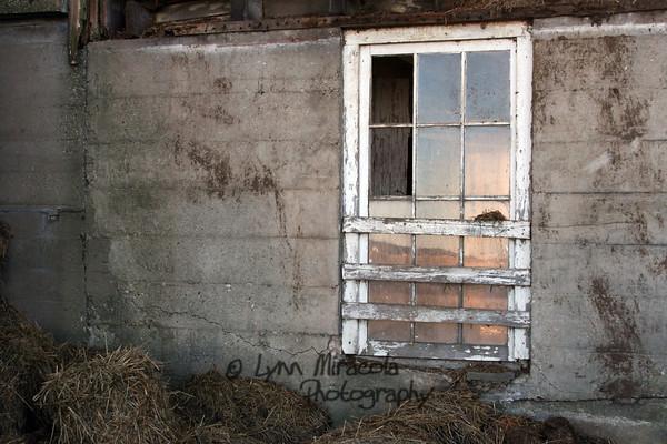Old Barn Window 1/8/12