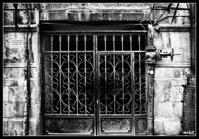 Yard Gate