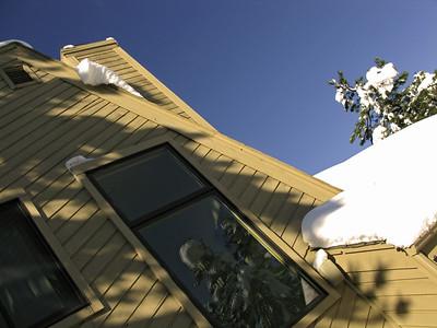 Snow 2009 04 (16)