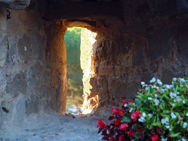 A detail view of a window illuminated by outside sunlight from an old castle in Montalcino, Italy. The flowers add a nice touch of color in the foreground.