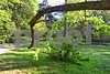 DSC_1213 Curved Branch Arboretum