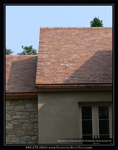 Residence_in_Haverford_PA_Patrimony_Ocre_Lichen_#1