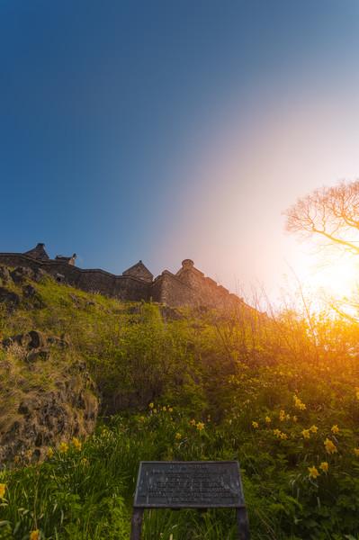 Up the hill - Arthur