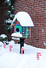 Christmas Day at the Little Free Library, Mineral Point, Wisconsin