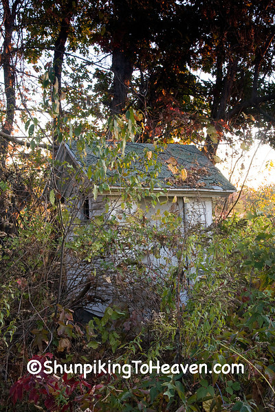 Overgrown Outhouse at Orange Mill School, Juneau County, Wisconsin