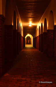 I discovered this interesting walkway connecting the mansion to an out-building. This was about sunrise on a foggy Saturday morning in October 2012.