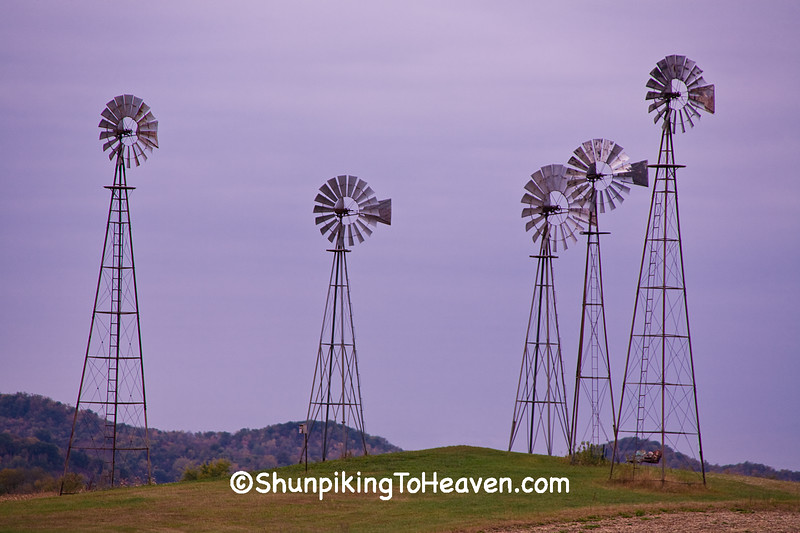 Five Windmills at Dawn, LaCrosse County, Wisconsin