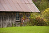 Farm Shed in Autumn, Winona County, Minnesota
