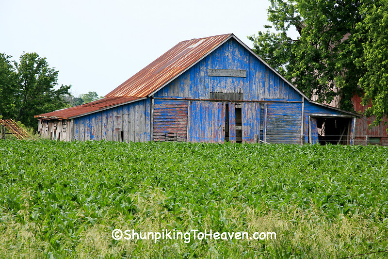 Blue Shed at Sywassink Farm, Muscatine County, Iowa