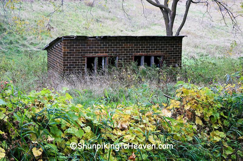 Tile Chicken Coop, Sauk County, Wisconsin