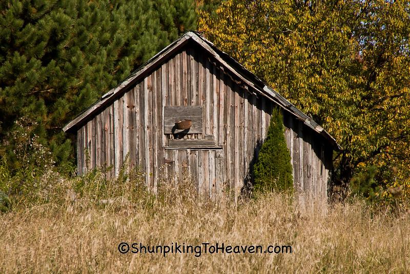 Possible Sugar Shack, Monroe County, Wisconsin